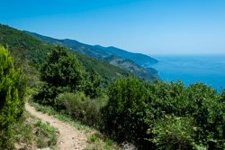 High Trail from Monterosso to Vernazza, Cinque Terre, Italy