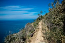 Trail from Monterosso to Levanto, Cinque Terre, Italy